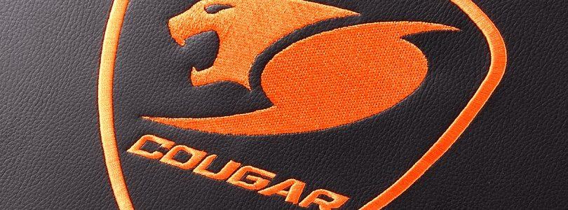 Cougar Armor (2)